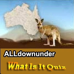 "Australian ""What am I"" text quiz. *5 clues"" Have got an idea what it is?"