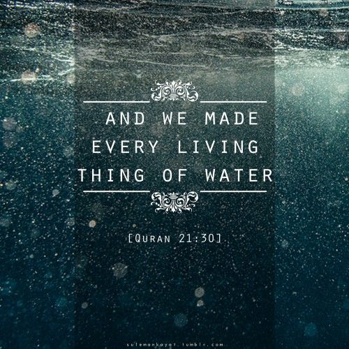 A drop of water equals life, so preserve it. #savewater
