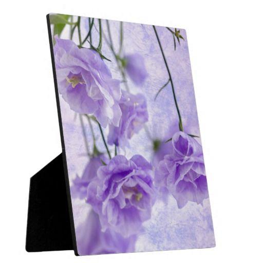 Purple Campanella Flowers Macro Plaques
