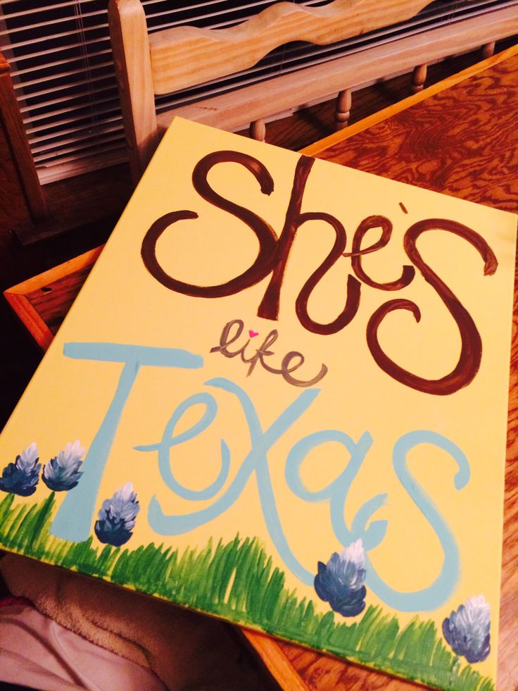 Josh Abbott Band- She's Like Texas-my daughter painted this!