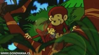 Gondwana : Felicidad #Videos #YouTube #Musica http://www.yousica.com/gondwana-felicidad/ http://www.yousica.com