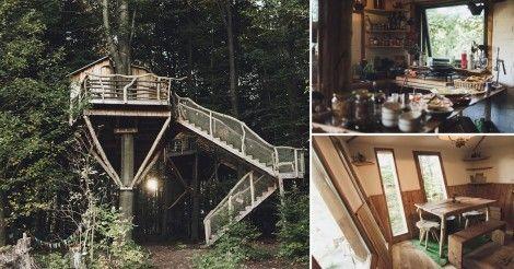 Hotel en el medio de un bosque redefine el concepto de escaparse a la naturaleza