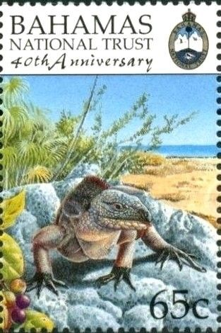 Pin By Zenaida Flores On Stamps Postage Stamps Stamp Mail Art