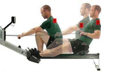 Hvilke muskler styrker jeg i romaskinen?
