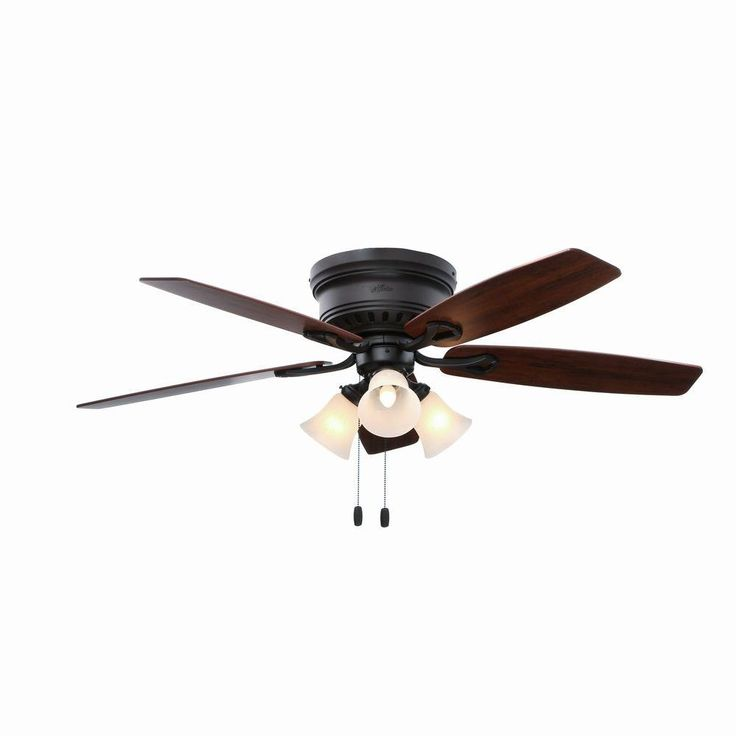 Best 25 hunter ceiling fans ideas on pinterest 52 ceiling fan hunter ceiling fans with regular light bulbs hunter fan continues to be in the business of making quality made ceiling fan since hunter was origina aloadofball Images
