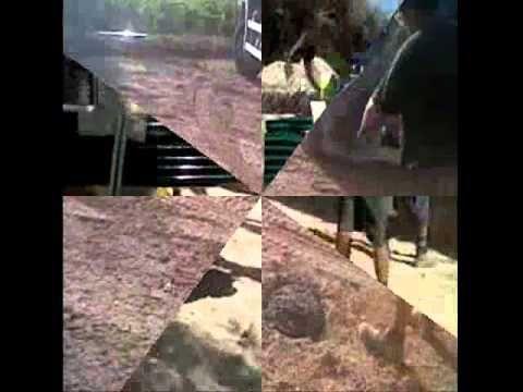 Como se monta una valla con cercado metálico de malla simple torsión o cliclonica, aquí lo tienes. www.vinuesavallasycercados.com