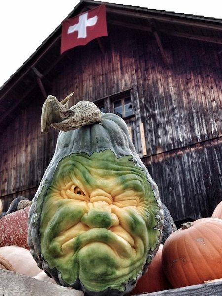 For Pumpkin Festival, Artist Does Amazing Squash Carvings - DesignTAXI.com Your too cute to be mad pumpkin!