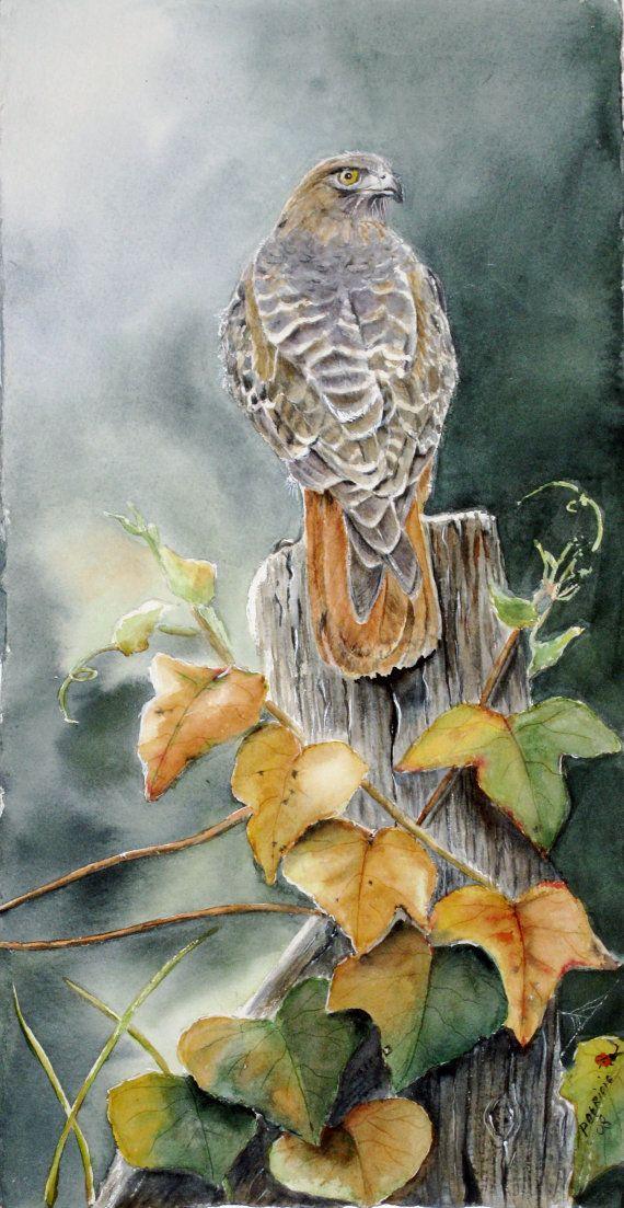 Falco coda rossa originale di TivoliGardens su Etsy