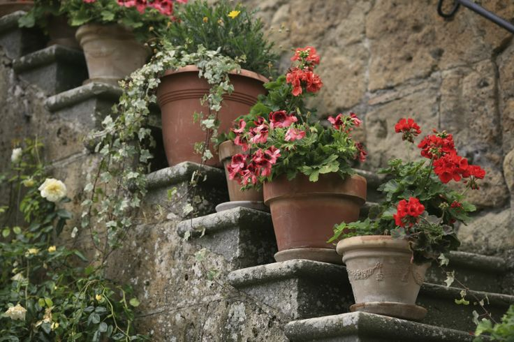 tuscan garden design Great Gardens Pinterest