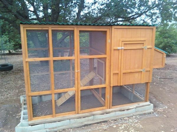 49 best images about rabbits on pinterest english for Duck hutch plans