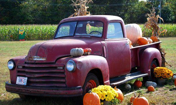 Conklin Farm u pick Pumpkins, hayrides, corn maze, In Montville,NJ