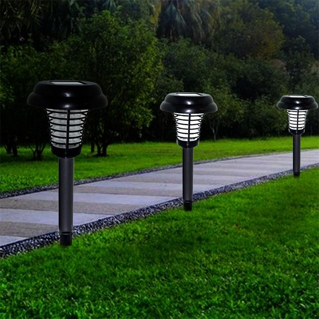 Lights In 2020 Top Rated Landscape