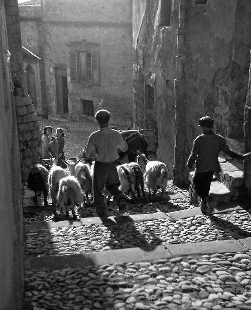 Fosco Maraini (Firenze, 15 novembre 1912 – 8 giugno 2004): Agrigento Italy 1951