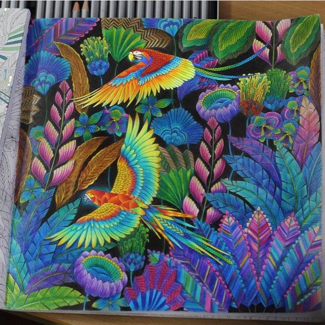 Parrot And Jungle Inspirational Coloring