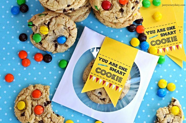 Homemade M&M Soft Batch Cookies | Jasey's Crazy Daisy
