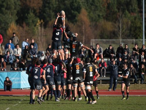 Campamento de rugby en la Universidad de Valladolid Rugby camp https://www.campamentos.info/Campamentos-de-verano/Espana/Castilla-y-Leon/Valladolid/Rugby-Camp-en-la-Universidad-de-Valladolid-672