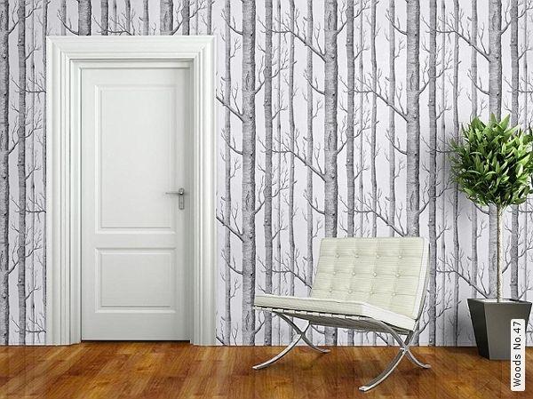 tronc de bouleau papiers peints • pixers - papier peint arbre