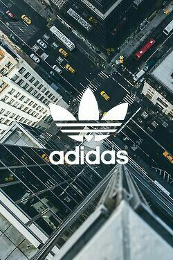 City Adidas Logo Phone BackgroundsIphone