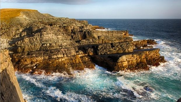 The Mistaken Point ecological reserve has been named a UNESCO World Heritage…