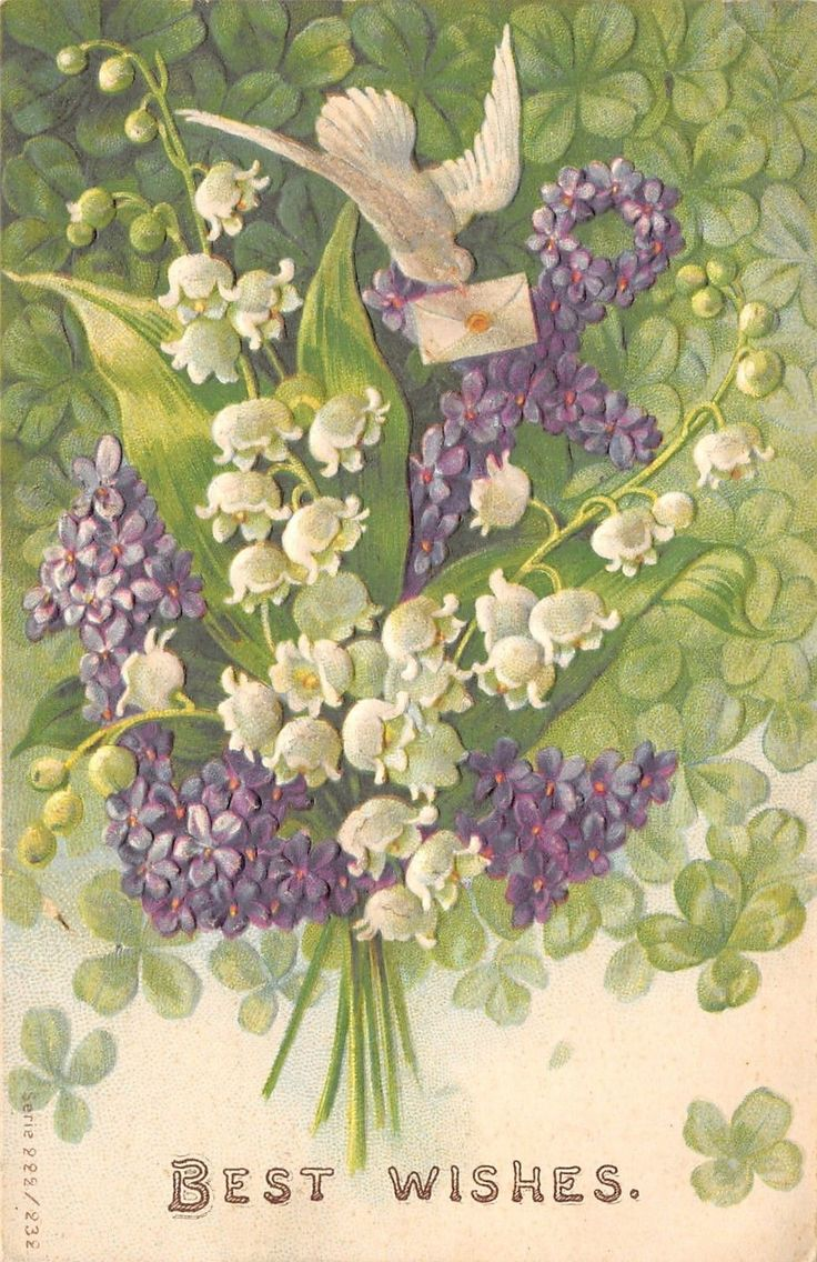 479 best floral lily of the valley images on pinterest lily of the white dove violets flower anchor lily of valley shamrocks emboss ser 222 1905 izmirmasajfo