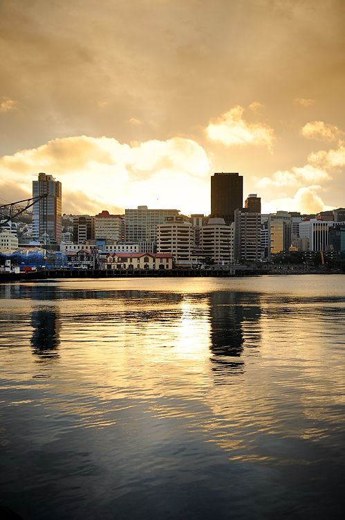 I am not a city person but I visited this city last year and it must be nz's nicest city- Wellington ( Capital of NZ)