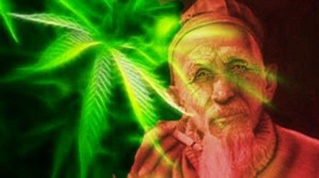 95 Best Images About Cannabis Wisdom On Pinterest Hemp