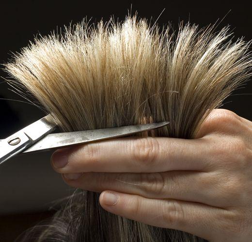 Πως Να Μειώσεις Την Εμφάνιση Της Ψαλίδας (Χωρίς Να Κόψεις Τα Μαλλιά Σου) Vol. 2 | Misswebbie.gr