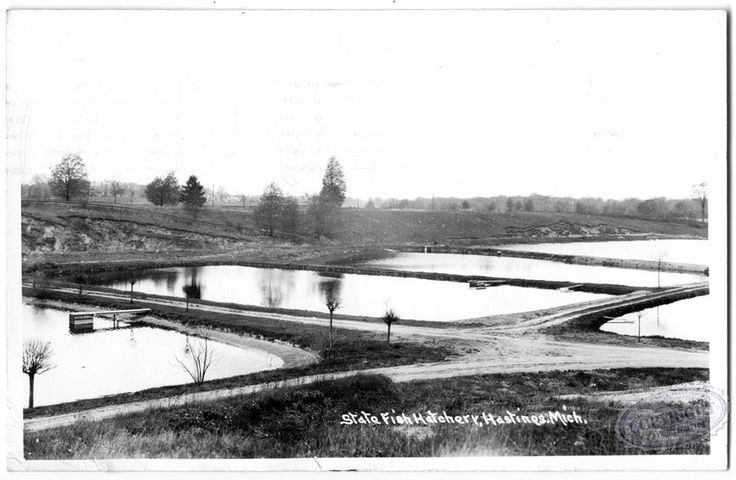 36 best images about barry county history on pinterest for Fish hatchery near me