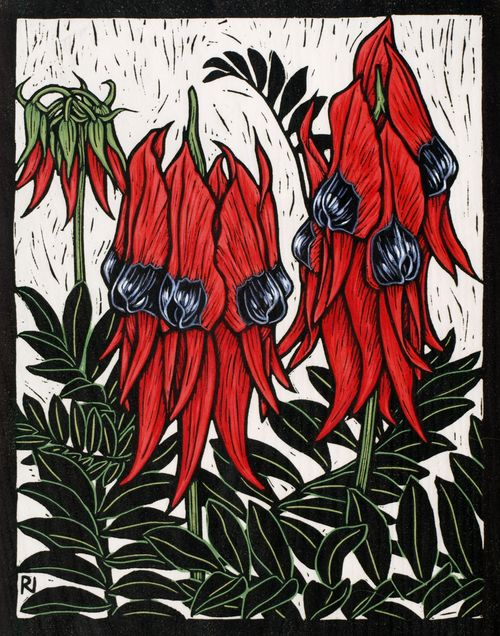 Rachel Newling: Sturt's Desert Pea, 29 x 22.5 cm Edition of 50 Hand coloured linocut on handmade Japanese paper