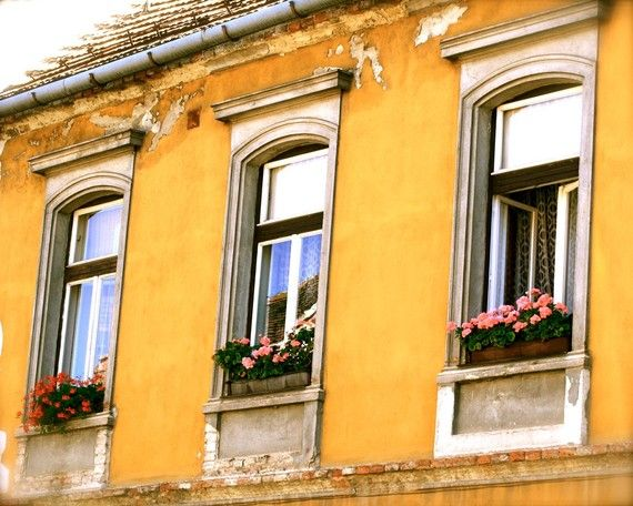 Hungary Photo - Hungarian Window Boxes - Yellow Photograph - Sopron - Flowers - Hungary Architecture