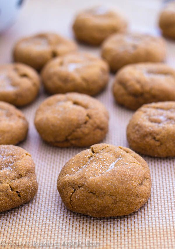 Thick, Soft, Puffy, & Chewy Gingersnaps--these might be better to try with