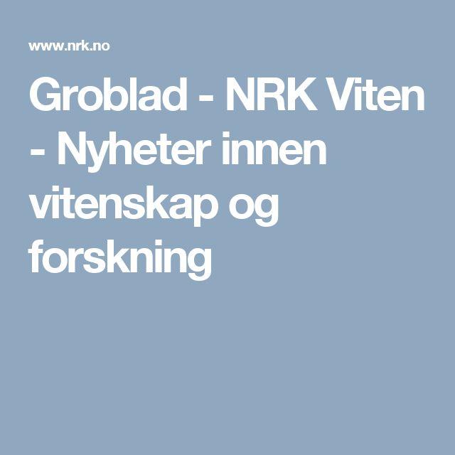 Groblad - NRK Viten - Nyheter innen vitenskap og forskning