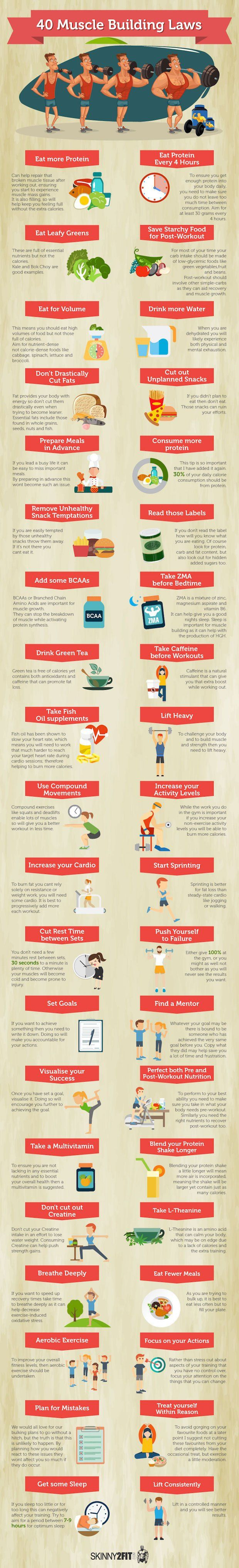 Muscle Building Laws [by Skinny2Fit -- via #tipsographic]. More at tipsographic.com