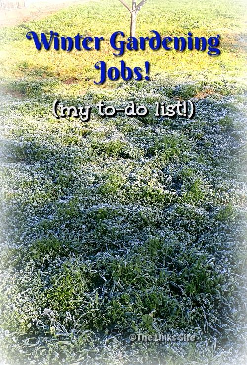 Here is a handy list of winter gardening jobs that need doing over the cooler months! thelinkssite.com