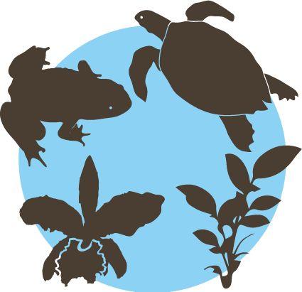 ícono biodiversidad