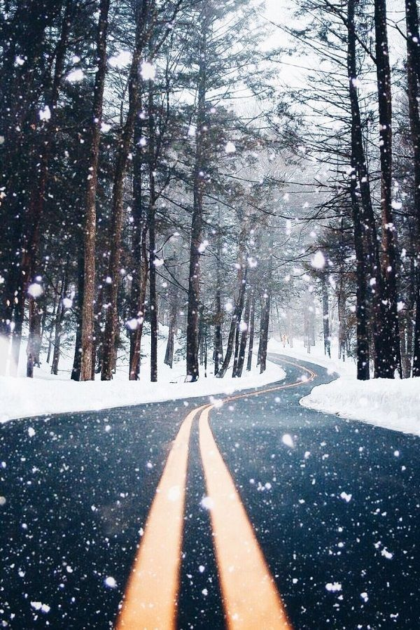 Beautiful snow falling