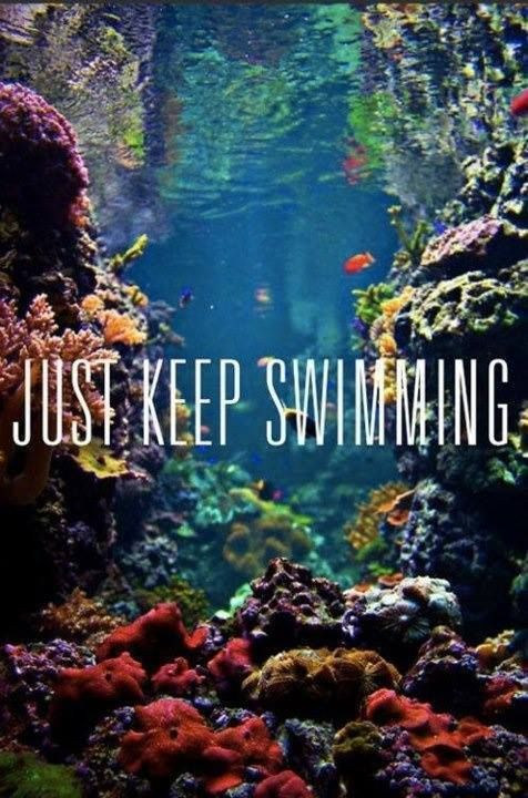Just keep swimming..