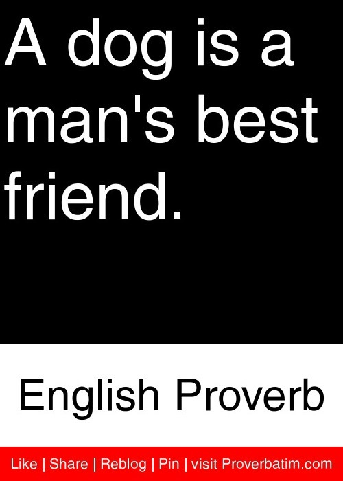 A dog is a man's best friend. - English Proverb #proverbs #quotes
