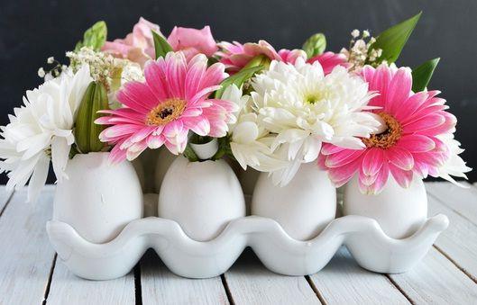 Yumurta Kabuğundan Neler Yapılır?