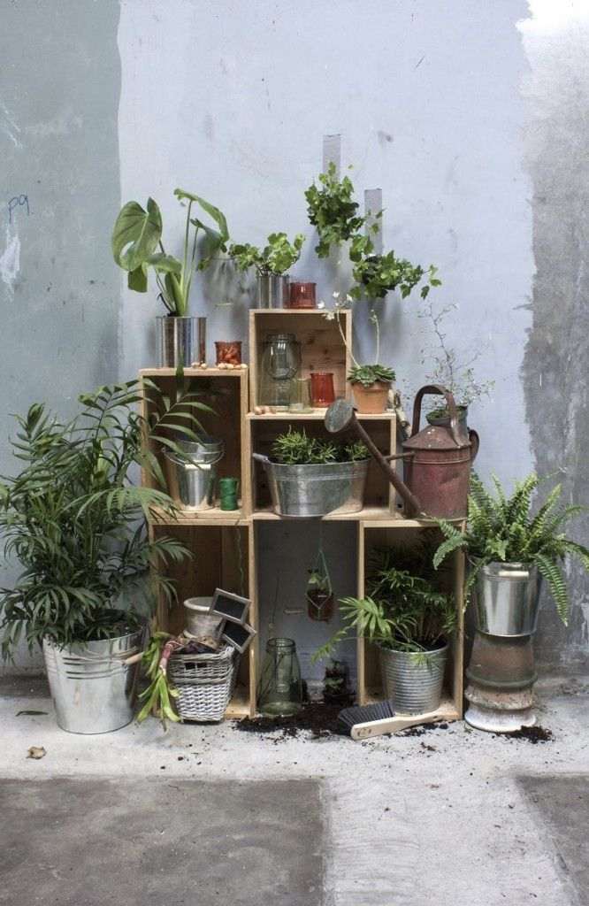 Garden Theme @sostrenegrene