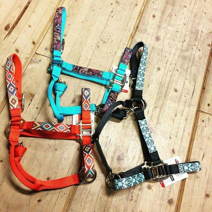 Les licous Weaver de la collection Aztec et Paradise sont accessibles en ligne : https://chambriere.ca/produits/c-1-le-cheval/c-8-licous/c-9-licous-nylon