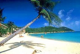Looking for a great vacation destination? A Caribbean Island vacation can be a relaxing fun adventure. Known though out the world for its white sandy beaches and clear waters, a trip to the Caribbean will be an...
