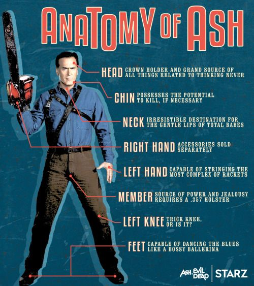 This infographic breaks down the anatomy of Ash from Ash vs Evil Dead.
