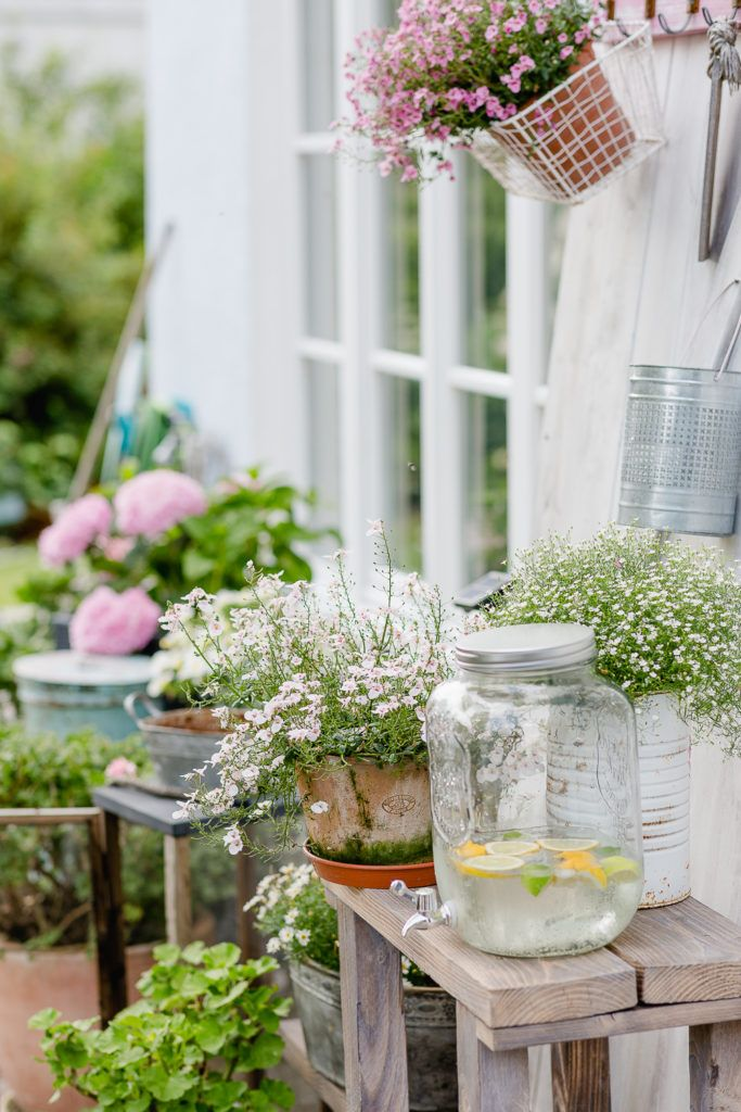 Holunderblutensirup Rezept Mit Bildern Blumentisch Garten Terrasse Terrasse Bepflanzen