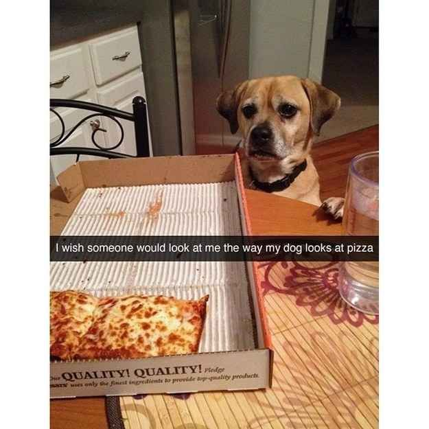 And this Snapchat that all single people will relate to. | 24 Snapchats That Are Way More Clever Than You