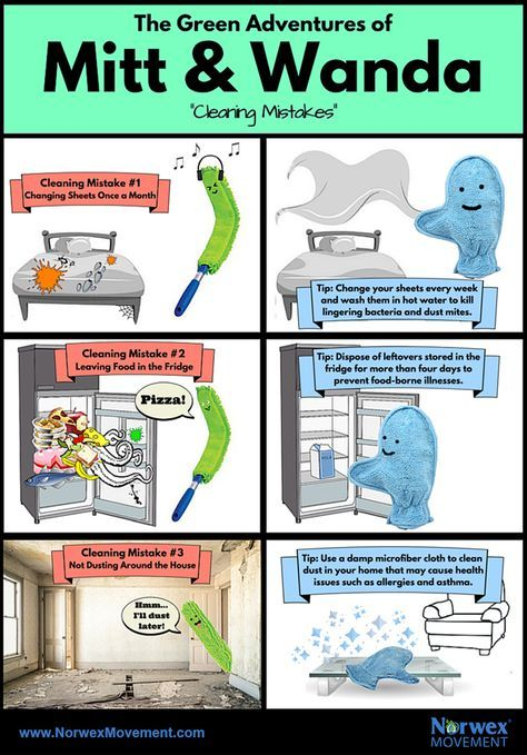 The Green Adventures of Mitt & Wanda: Cleaning Mistakes