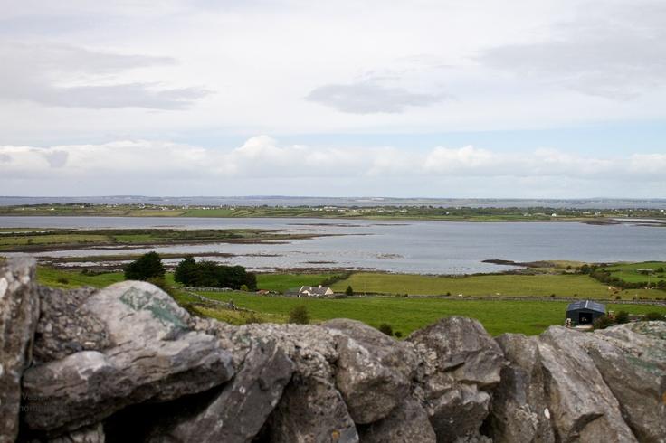 Overlooking the Bay    www.facebook.com/vasphotoca