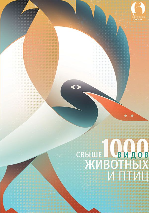 Zoo posters on Behance