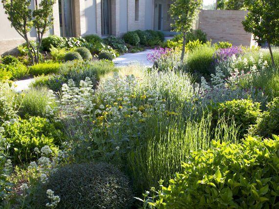 Jardines exuberantes de bajo riego 1 parte jardiner a - Centros de jardineria madrid ...
