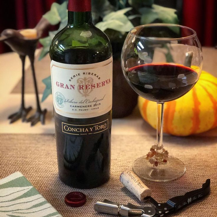 """It occurred to me that I didn't have much wine in Las Vegas over the weekend (because of all the running). So to remedy that, we're continuing to """"sample"""" new wines to pair with Thanksgiving dinner, like this Chilean Carmenere from Gran Reserva Serie Riberas 2015. What's in your glass tonight?"""